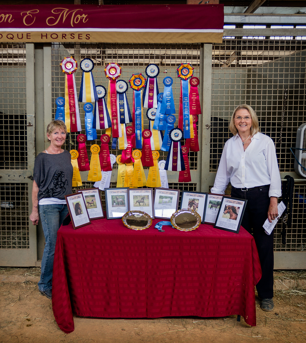 Awards for Don E Mor horses at ERAHC Virginia Classic 2013